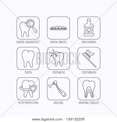 Tooth, dental braces and mouthwash icons. Diagnostics, toothbrush and toothache linear signs. Dentinal tubules, protection flat line icons. Flat linear icons in squares on white background. Vector