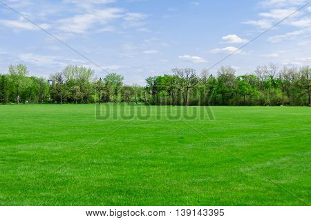 beautiful sunny day in park at spring time, blue cloudy sky, green lawn, leafy trees