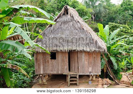 Peru Peruvian Amazonas landscape. The photo present typical indian tribes house in the Amazon