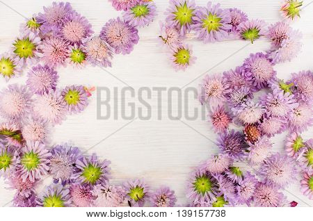 Frame of pretty asters on white wooden background. Violet flowers placer with copyspace