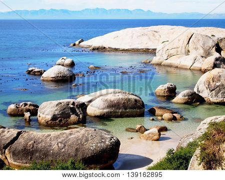 Peaceful relaxing seaview. Landscape. Boulders Beach Nature Reserve. Western Cape South Africa. Romantic place.