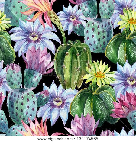 Watercolor seamless cactus pattern. Hand painted cacti background