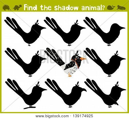 Educational game for children of kindergarten and school age on the development of logic. Forty wild bird. Vector illustration