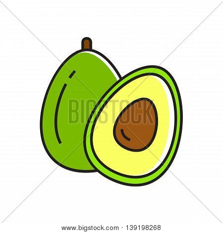 Illustration of avocado cut in half. Vegetable, healthy food, greengrocery. Food concept. Can be used for topics like healthy food, vegetables, greengrocery