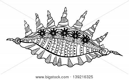 Abstract seashell line decorative ethnic ornament drawn contour isolated on white background sacred geometric decor element design print pattern vector illustration for coloring book or page for adult