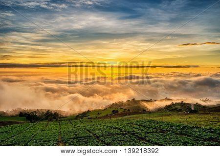 Sunrise Over Mountain At Phu Tab Berk,thailand