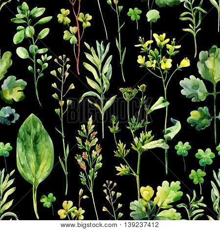Watercolor meadow weeds and herbs seamless pattern. Watercolor wild field herbs on dark background. Hand painted illustration