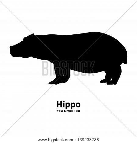 Vector illustration of black silhouette of a hippopotamus isolated on a white background. Behemoth is a side view profile.