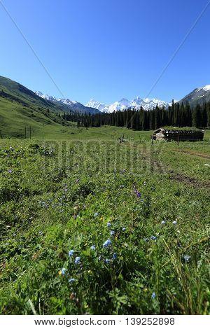 closeup of beautiful mountain landscape in xinjiang china