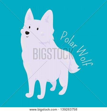 Polar Wolf isolated on blue. Arctic or Melville Island. White coloration, narrow braincase, and large carnassials. Part of series of cartoon northern animal species. Child fun pattern icon. Vector