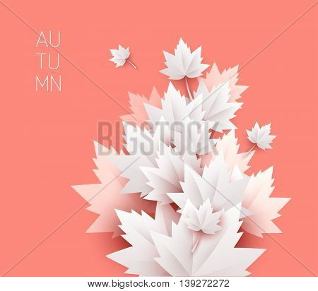 autumn leaves soft color background