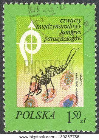 MOSCOW RUSSIA - JANUARY 2016: a post stamp printed in POLAND shows an insect Anopheles the series
