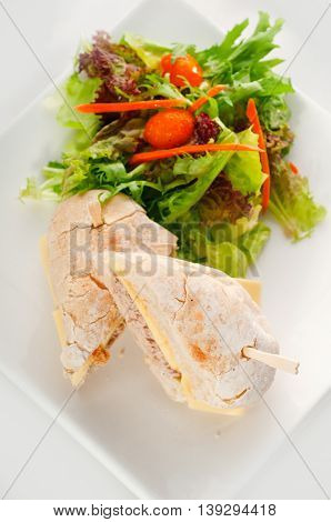 close up image of tuna and cheese sandwich with salad