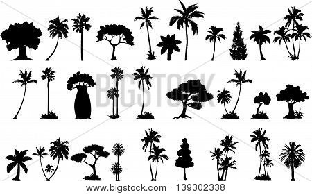 collection of palm tree silhouette for you design