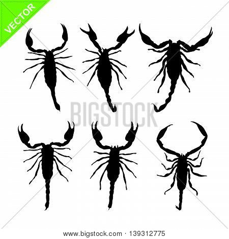 scorpions silhouettes vector on white color background