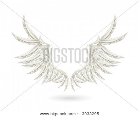 White wings, mesh poster
