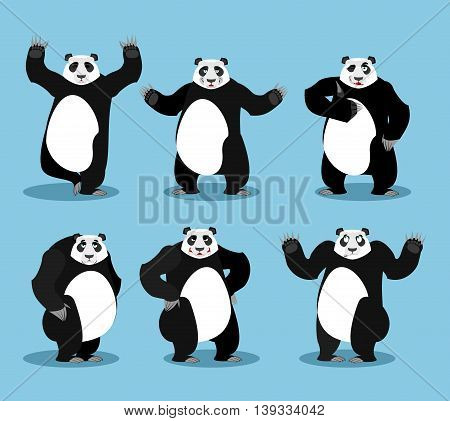 Panda Set. Chinese Bear Variety Of Poses. Animal Expression Of Emotion. Wild Animal Yoga. Angry And