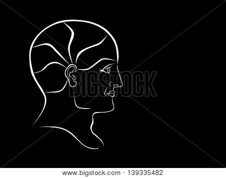 Vector Phrenology Head White Outline Landscape Format