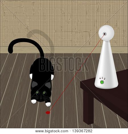 interactive laser toy for cats and black cat on the floor