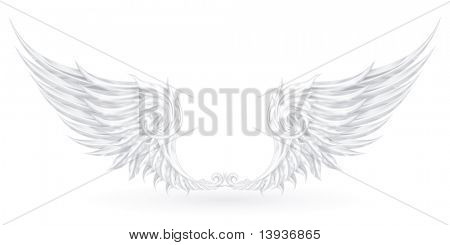 Wings White, eps10 poster
