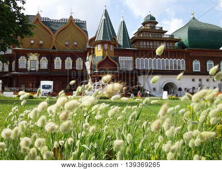 Wooden palace of Tsar Alexey Mikhailovich with th feather grass view in park Kolomenskoe - Moscow Russia