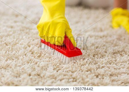 Housewife Scrubing And Washing Carpet