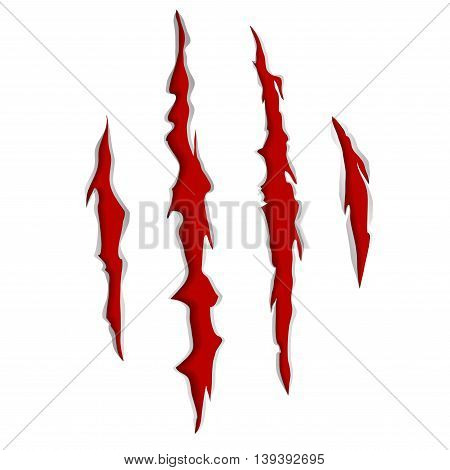 Animal or Monsters Claw Scratches Marls Vector Illustration