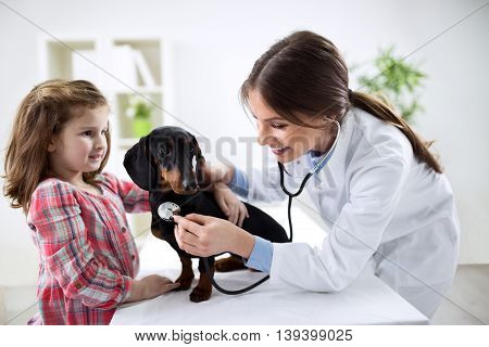 Cute girl at a veterinarian examining his dog