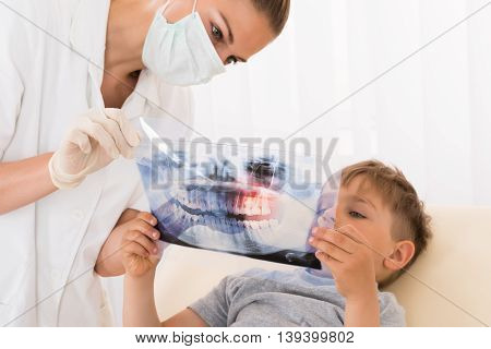 Young Female Doctor Showing Teeth Xray To Child Patient In Clinic