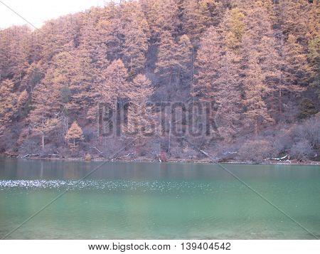 Jiuzhaigou national park, Sichuan, China, Five Flower Lake