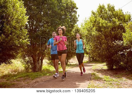 Three Joggers On A Running Trail