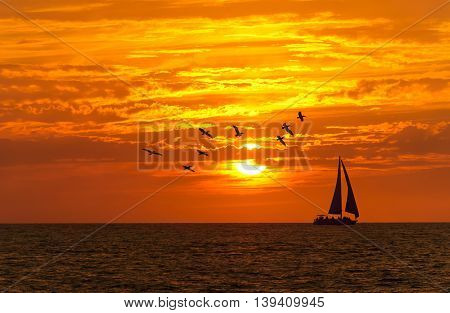 Sailboat sunset fantasy is a boat sailing with full sail open silhouetted against a colorful orange sky and large seabirds flying overhead.