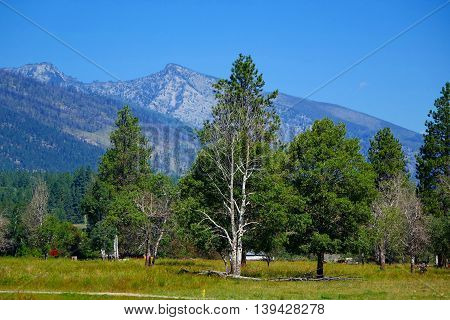 Bitterroot Mountains and ranch near Darby, Montana.