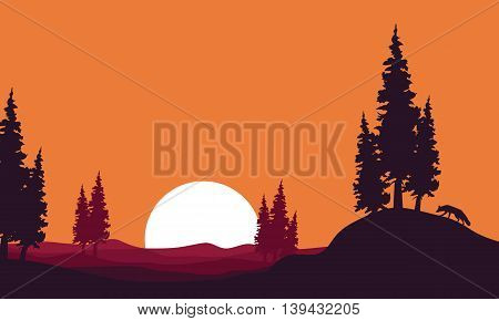 At afternoon landscape fox silhouettes vector illustration