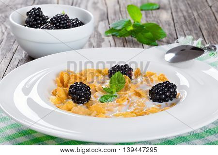 tasty corn flakes with milk and blackberry in a white dish with spoon on table napkin on an old rustic tableview from above bowl with dewberry and mint leaves on background close-up