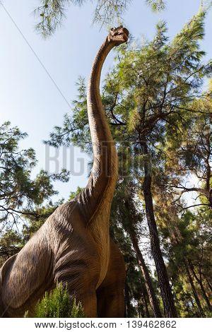 Diplodocus Herbivorous Dinosaur Walking Forest