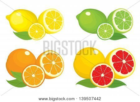 Collection of citrus products - orange, lemon, lime and grapefruit with leaves, isolated on white background. Vector set of whole fruits and slices. Colorful illustration for design.