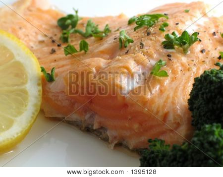 Salmon Dinner Close-Up