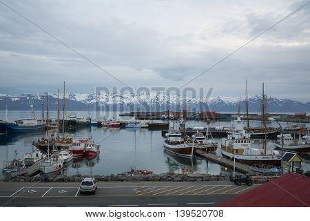 Fishing Harbor Of Husavik