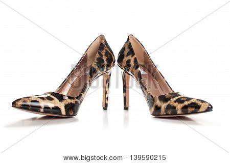Stiletto High Heels Shoes In Animal Print Design, With High Heels Shoe In Brown Suede