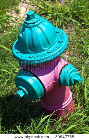 water hydrant in green and pink in the grass