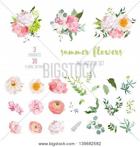 Ranunculus rose peony dahlia camellia carnation orchid hydrangea flowers and decorative plants big vector collection. All elements are isolated and editable.