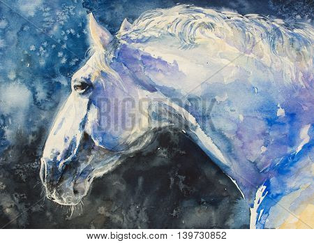 Painting of lipizzaner horse portrait. Picture created with watercolors