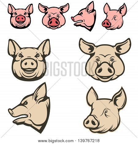 Set of pig heads. Design element for restaurant menu poster BBQ invitation card. Vector illustration.