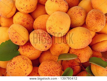 Background Of Fresh Ripe Apricots And Leaves