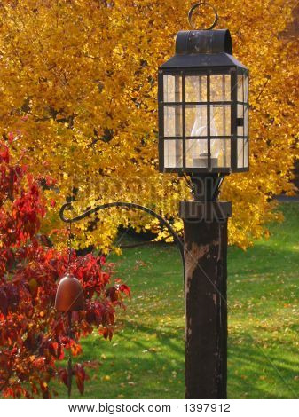 Lamp Post In Autumn