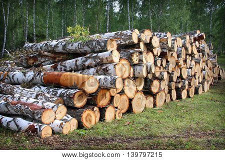 Pile of irregularly stacked pieces of firewood
