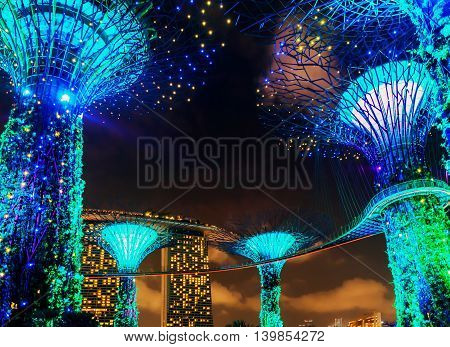 Supertrees Grove By Gardens By The Bay In Singapore