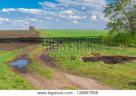 Classic landscape with earth road leading to agricultural fields at spring season in Poltavskaya oblast Ukraine