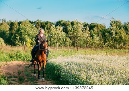 The Young Smiling Caucasian Woman In Casual Wear Riding The Brown Horse Along Summer Blooming Meadow Field At Sunny Countryside Ranch Village. Greenwood Background.